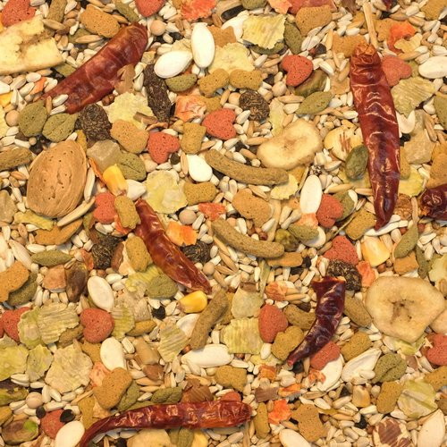 Higgins Vita Seed California Blend for Parrots, 5 lbs