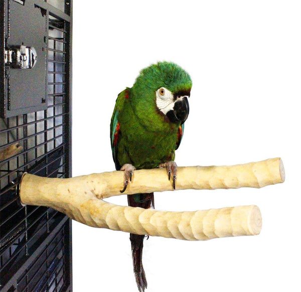 Birds LOVE Handcrafted Large Multi-Branch Coffeewood Perch