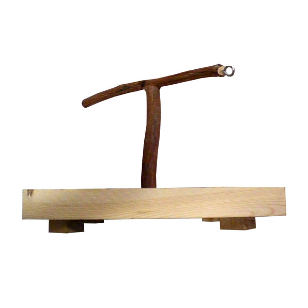 Dragonwood Training T-Stand