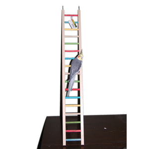 Ladder Small 12 inch