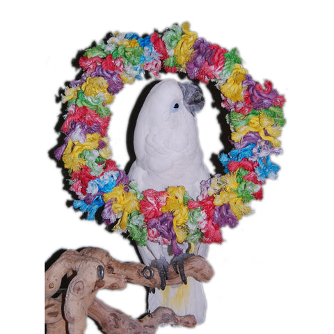 Cotton Wreath Large