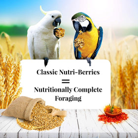 Lafeber's  NON-GMO Macaw Cockatoo Nutri-Berries Bird Treats or Daily Diet 20lbs