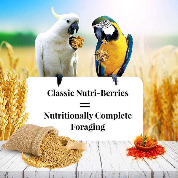 Laf Food Macaw Nutriberry - 20 LBS