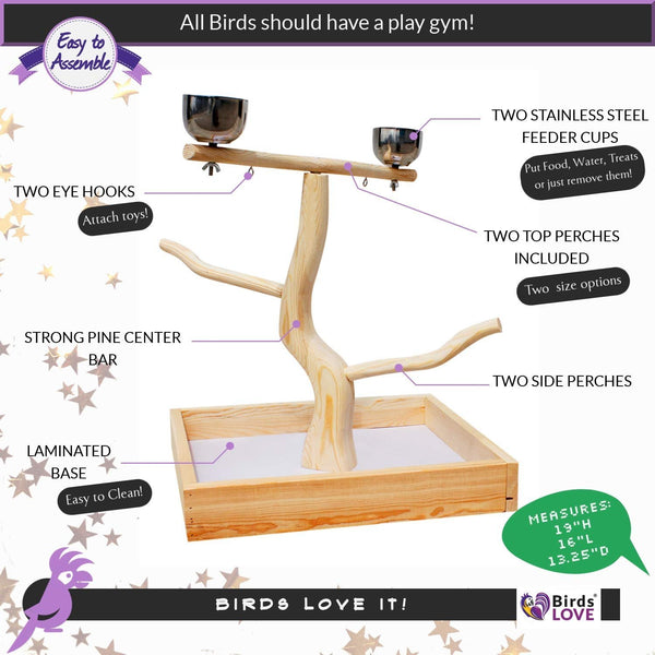 Birds LOVE Tabletop T-Stand Deluxe Play Gym Bird Stand for Medium Birds - Easy Assembly Easy to Clean this stand - Includes 2 top perches