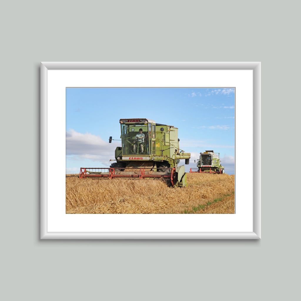 8x6 Mounted Print - Vintage Claas Combines