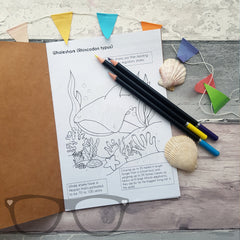 Open Colouring book showing a page of a whale shark ready to be coloured in