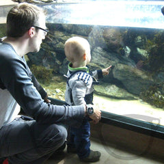 The Mini Geek and the Mr Geek watching some fish at Plymouth Aquarium