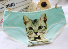 Hot Selling Cat Panties Women's Underwear / Briefs