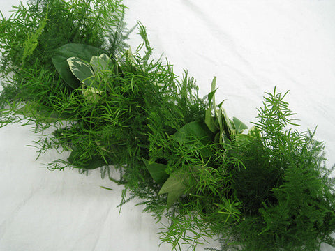 Garland Sprengeri, Plumosus and Pottosporum
