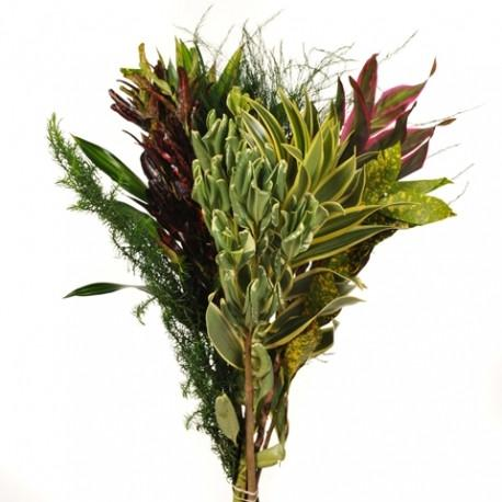 Tropucal Mix Foliage Bouquets