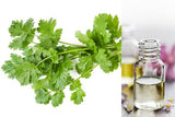 Coriander (Essential Oil)