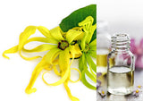 Ylang Ylang (Essential Oil)