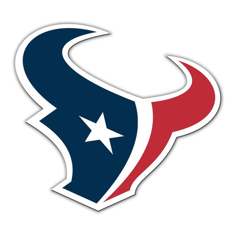 "Houston Texans 12"" Magnet Logo"