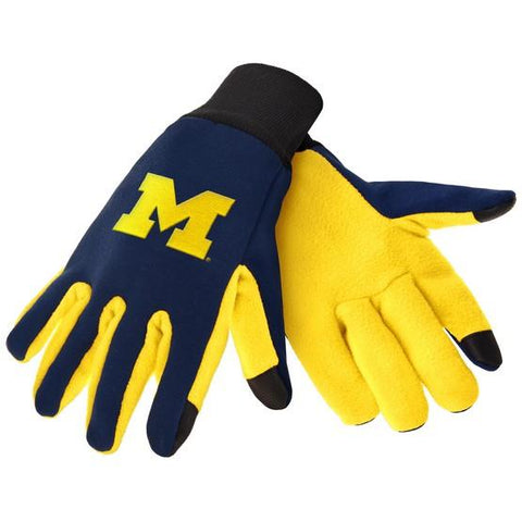 Michigan Wolverines Color Texting Gloves