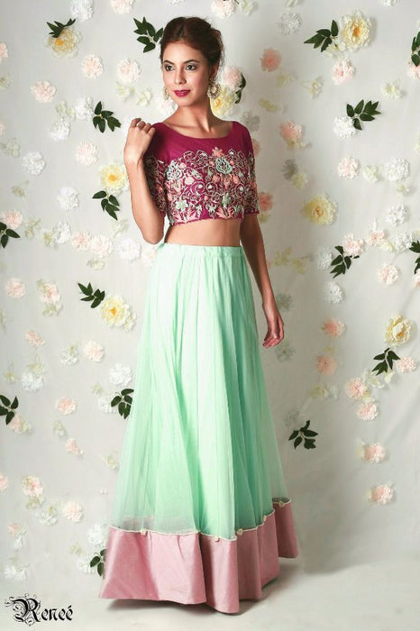 Avani Embroidered Net Lehenga