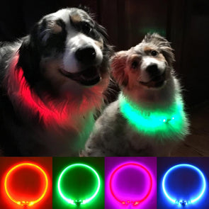 Light Up Fiber Optic Dog Necklaces