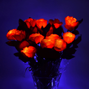 light up LED Roses by GlowCity