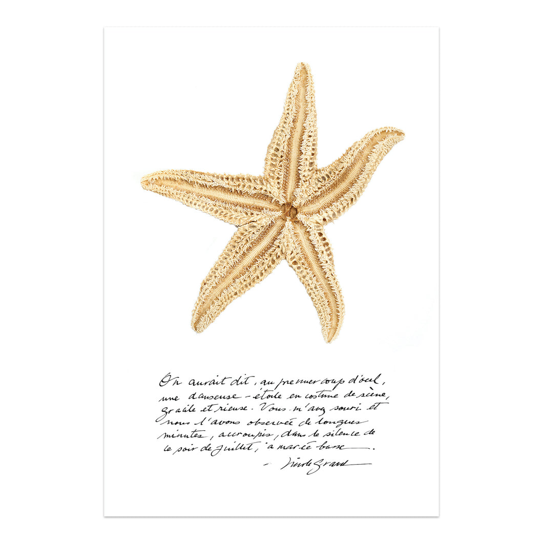 affiche étoile de mer, étoile de mer sur fond blanc, photographie étoile de mer sur fond blanc, starfish on white background, starfish photography, art maritime, maritime art, À Marée Basse, affiche étoile de mer et calligraphie, starfish and calligraphy poster
