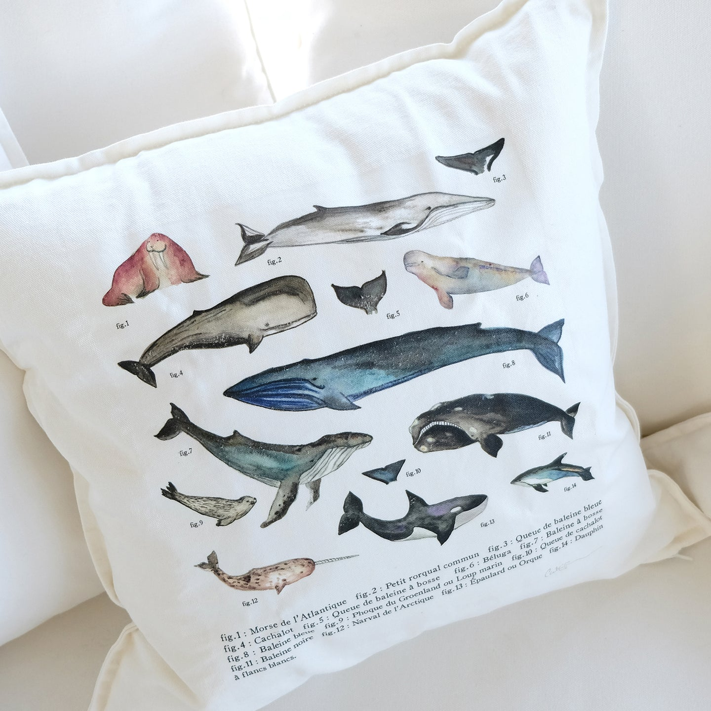 Coussin LES MAMMIFÈRES MARINS