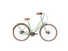 carbon belt Dutch bike lugged steel classic city bike pashley