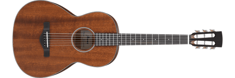 Ibanez Artwood AVN9OPN Vintage Series Open Pore Natural Acoustic Guitar