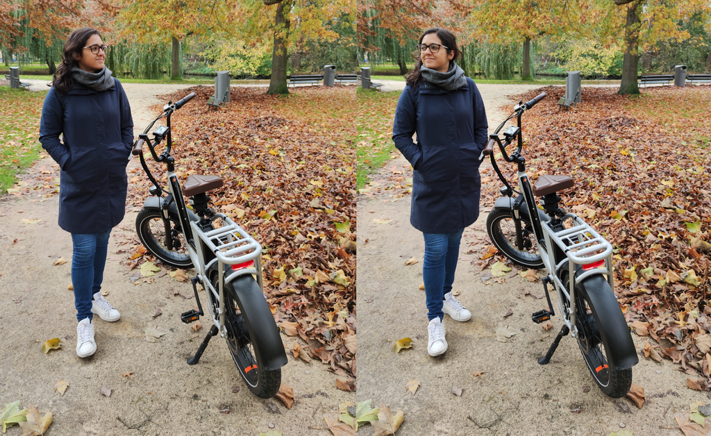 Camila RadRunner Plus Electric Bike