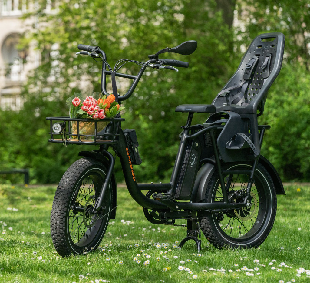 Ebike Accessories for Families