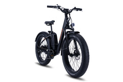 RadRhino Step Thru Electric Fat Bike Black