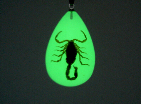 Glow in the Dark Scorpion Keychain