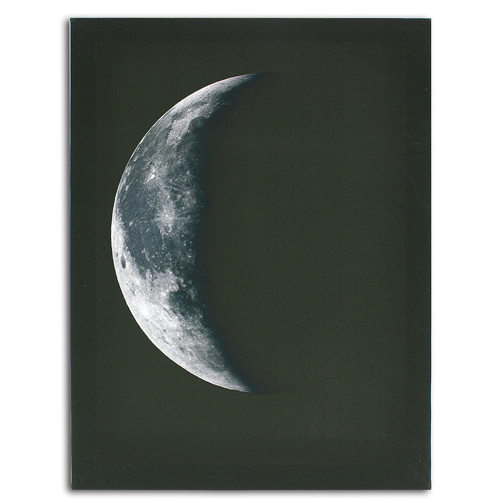 Canvas 4 Piece Moon Phase Art