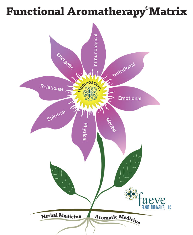 Faeve Plant Therapies Functional Aromatherapy®
