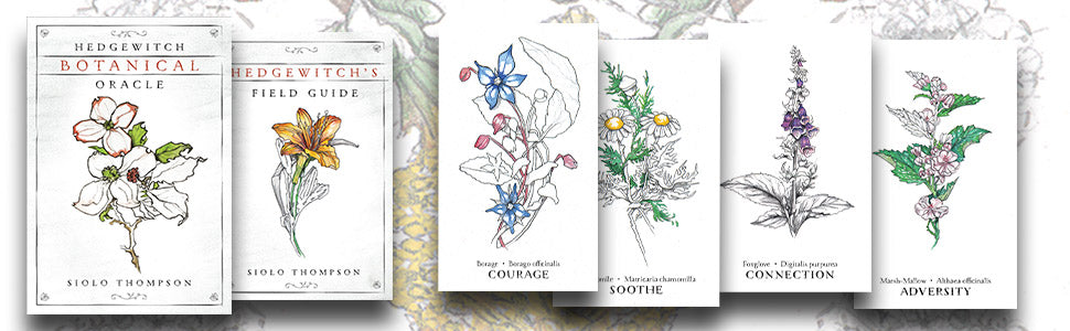 Hedgewitch Botanical Oracle card deck by Siolo Thompson
