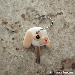 Broken cream lop key cover