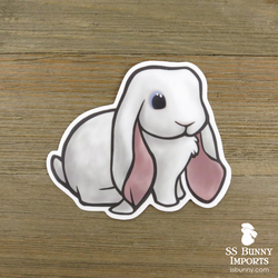 Blue-eyed white English Lop rabbit sticker