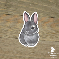 Chinchilla rabbit sticker