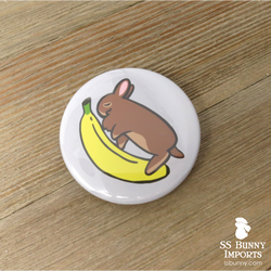 Brown bunny with banana pinback button