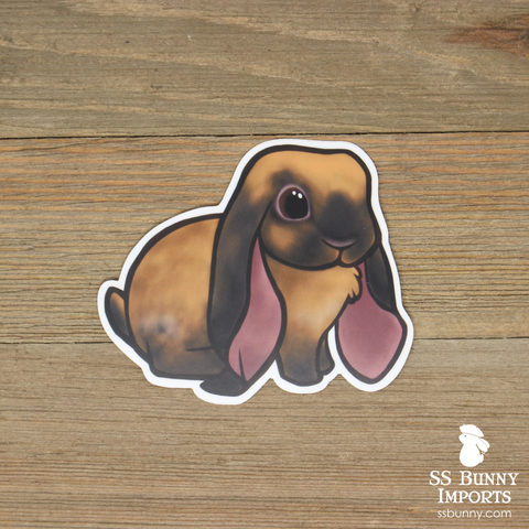 Black tort English Lop rabbit sticker