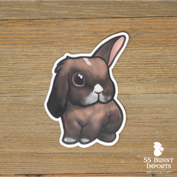 Black tort w/ white half lop bunny sticker