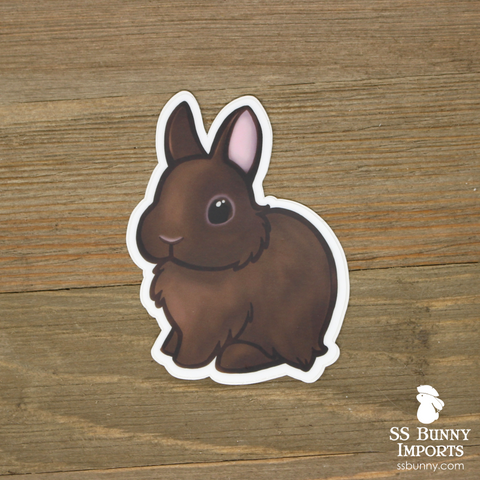 Chocolate dwarf rabbit sticker