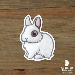 Brown blue-eyed Hotot dwarf rabbit sticker