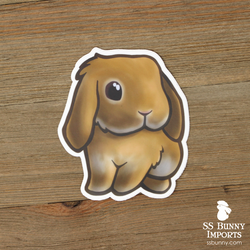 Orange lop rabbit sticker