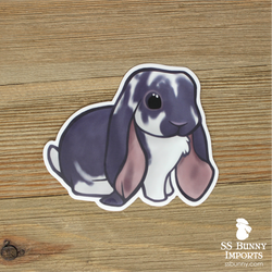 Broken blue English Lop rabbit sticker