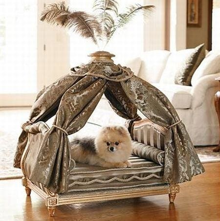 12 Luxury Dog Beds for Rich and Famous that Will Make Your Jaw Drop!
