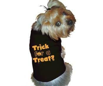 Enter to win the Doggie-Diva Boutique HALLOWEEN PET CONTEST!