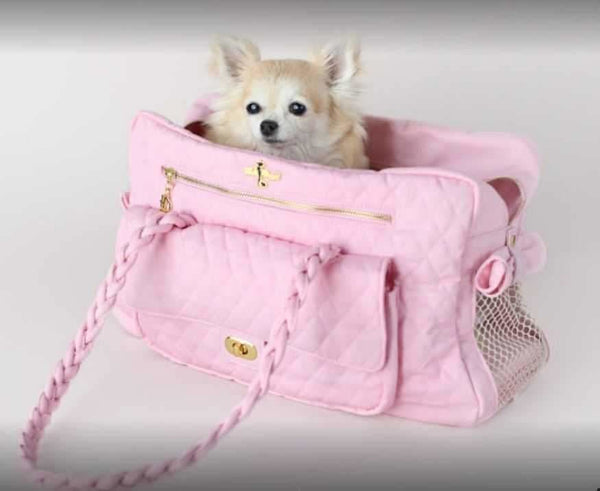 Find Best Doggie Carriers at a Fraction of the Designer Price