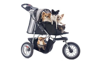 Meeting at the Vet in Strollers for  Large Dogs