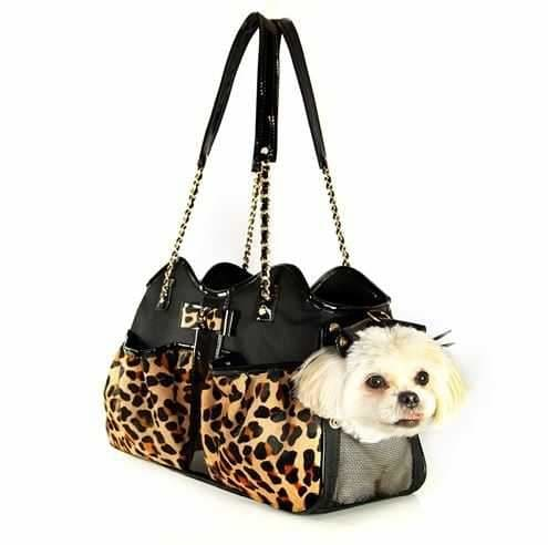 Prepare You For Doggie Travel with a Dog Purse Carrier