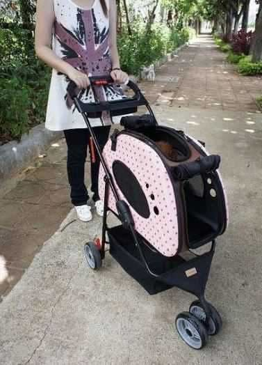 Is your Dog Right and Ready for a Dog Stroller?