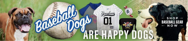Take Your Dog to September MLB Bark in the Park Events