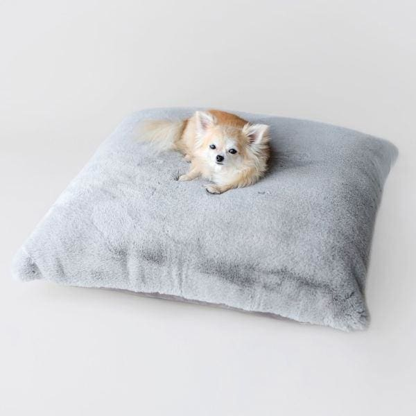 Which Doggie Bed is Just Right?